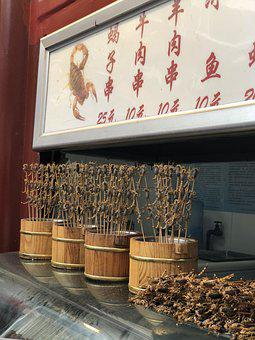Chinese, Food, Scorpions, Street Food, Insects, Beijing