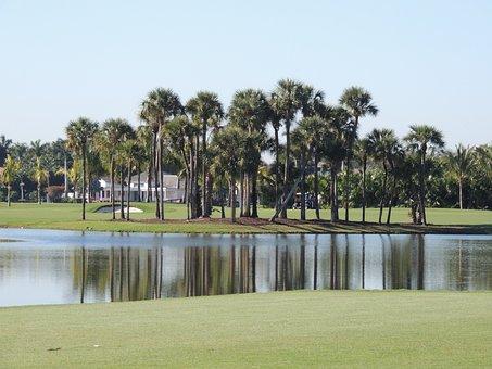 Golf Course, Lake, Landscape, Trees, Palm Trees
