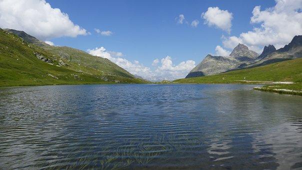 Mountain, Lake, Meadow, Landscape, Nature, Mountains