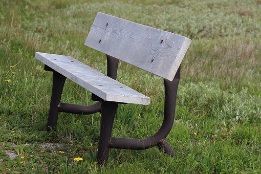 Bench, Newfoundland, Grass, Wood, Public, Park