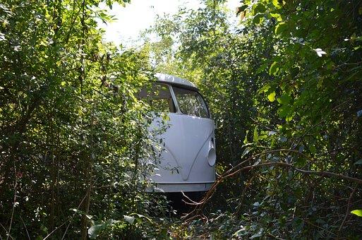 Volkswagen, Vw, Auto, Oldtimer, Classic, Overgrown
