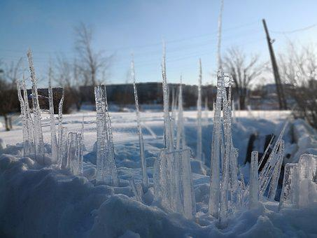 Winter, Snow, Ice, Icicles, Beautiful, Nature, Frost