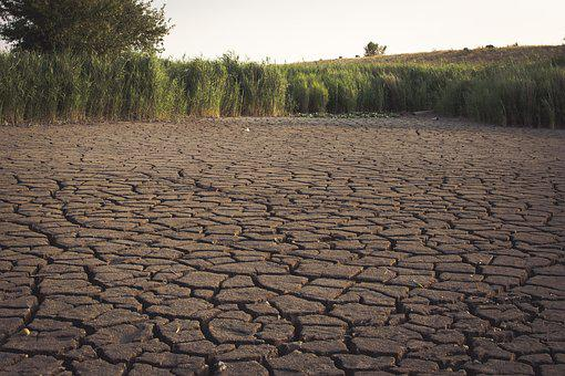 Dehydrated, Lake, Dry, Drought, Nature, Bank, Cracks