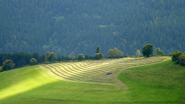 Vosges, Fields, Landscape, Nature, Summer, Agriculture