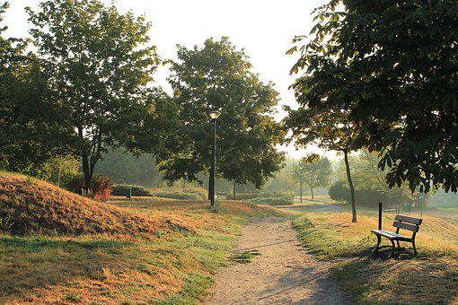 Morning, Park, Tree, The Path, Bench, Autumn, Foliage