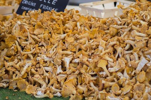 Mushrooms, Chanterelle Mushrooms, Market, Fall