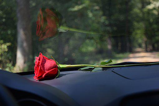 Red Rose On Car Dashboard, Reflection On Car Glass