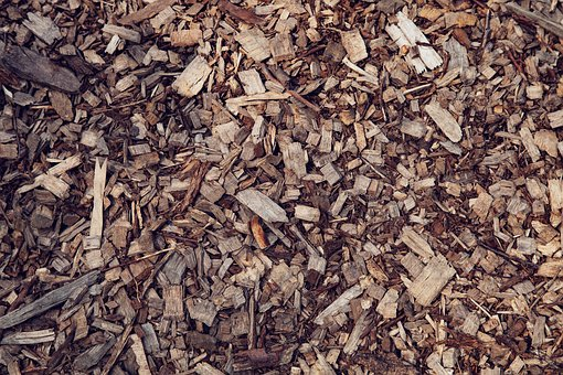 Wood, Chips, Sawdust, Brown, Forest, Planing