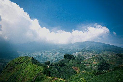 Landscape, Nature, Rice Fields, Sky, Mountain, Terraces