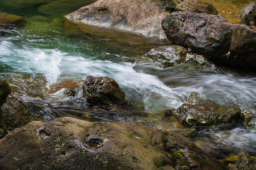 Streams, Pebble, Natural, The Scenery, Rock, Forest