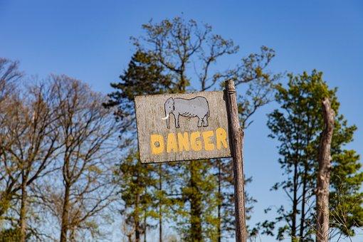 Danger, Elephant, Gevaarbord, Board, Attention, Warning