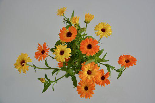 Flowers, Bouquet Of Flowers, Orange-yellow Color