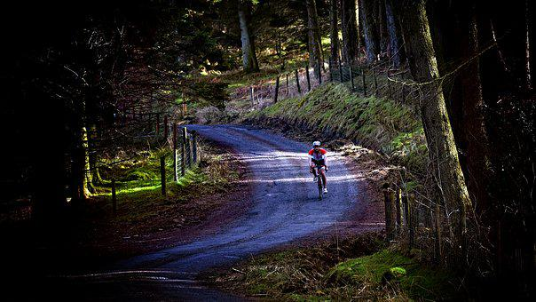 Cyclist, Landscape, Hill, Nature, Bike, Cycling, Sport