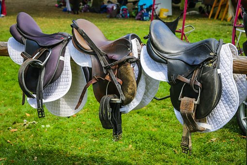Saddle, Ride, Equestrian, Horse Saddle, Dressage, Horse