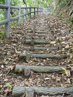 Stairs, Hiking, Woods, Natural, Landscape, Mountain
