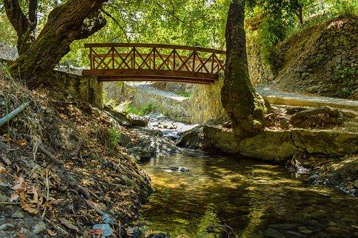 Bridge, Wooden, River, Romantic, Nature, Summer