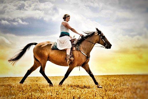 Ride, Trot, Horse, Animal, Western, Woman, Reiter