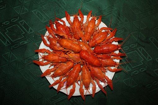 Crayfish, Boiled Crawfish, Red Crayfish, Food