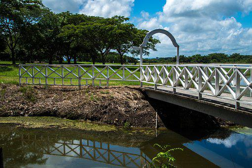 Bridge, Over, Creek, Walk, Reflection, Mirroring, Small