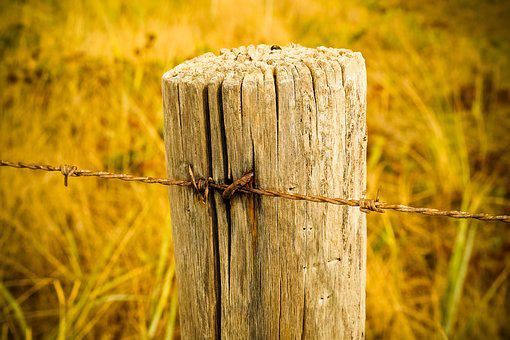 Fence, Wood Fence, Wood, Boards, Wooden Boards