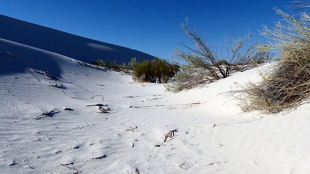 Desert, Sand, Dunes, Nature, Gypsum, White, Landscape
