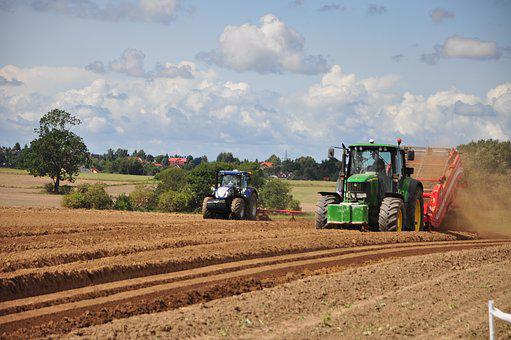 Tractor, Agriculture, The Cultivation Of, Village