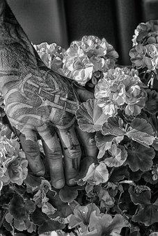 Tattoo, Hand, Flower, Man, Adult