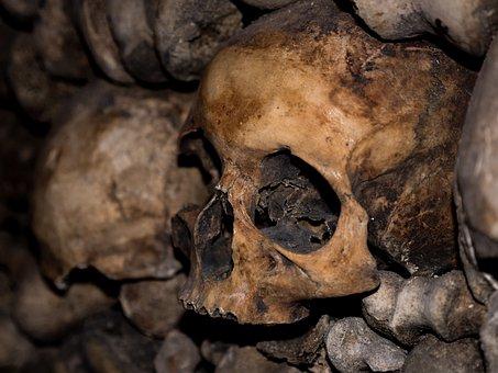 Skull And Crossbones, Catacombs, Horror, Skeleton, Dead