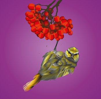 Bird, Drawing, Blend Tool, Poster, Free Image