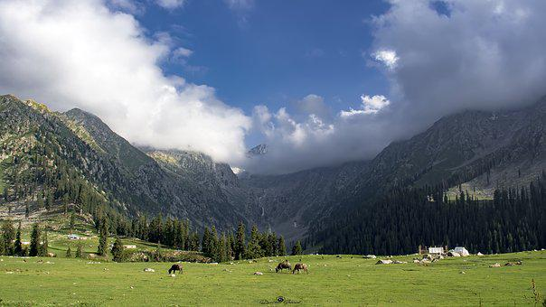 Meadows, Upperdir, Kpk, Mountain, Range, Grounds, Green