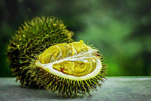 Tropical Fruit, Durian, Tropical, Exotic, Malaysia
