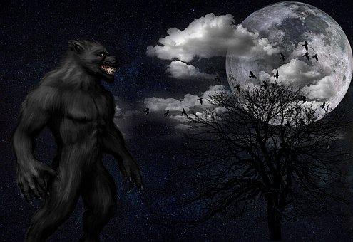 Mammal, Darkness, Nature, Secret, Art, Werewolf