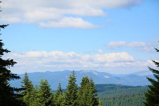 Mountains, Forest, Paysage, Landscape, Nature, Clouds
