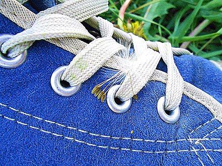 Shoe, Blue, Shoelace, Chmíří, Dandelion, Detail, Plant
