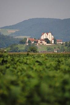 Wildegg, Castle, Aargau, Switzerland, Landscape