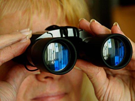 Spinage, Binoculars, Look, Peek, Watch, View, Optics