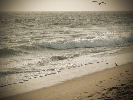 Malibu, Beach, America, California, Sea, Ocean, Usa