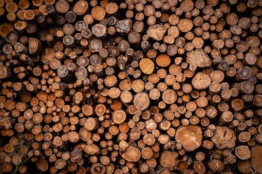 Pile Of Wood, Holzstapel, Tree Trunks, Firewood, Wood