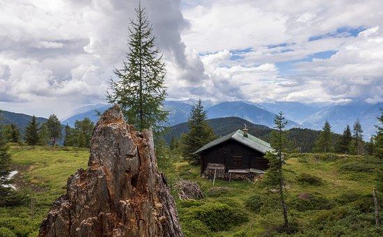 Hut, House, Alm, Mountains, Landscape, Tree Stump, Tree