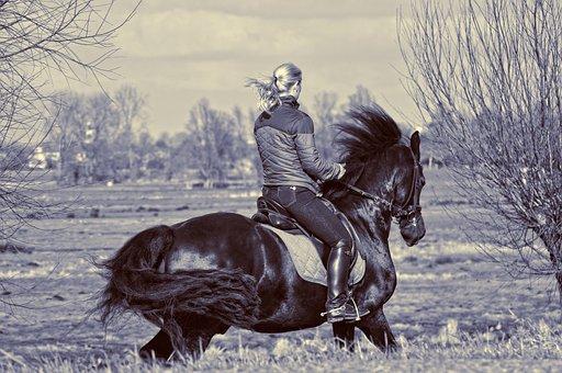 Horsewoman, Rider, Horse, Riding, Horseback, Gallop
