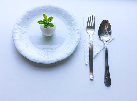 Minimalism, Diet, Egg, Plant, Dish, Silverware, White