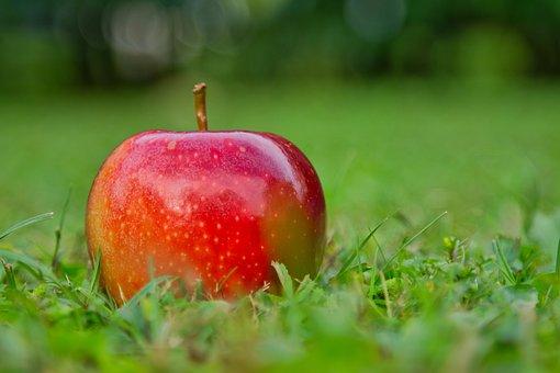 Apple, Gala, Red, Vitamins, Healthy, Apple Variety, Eat
