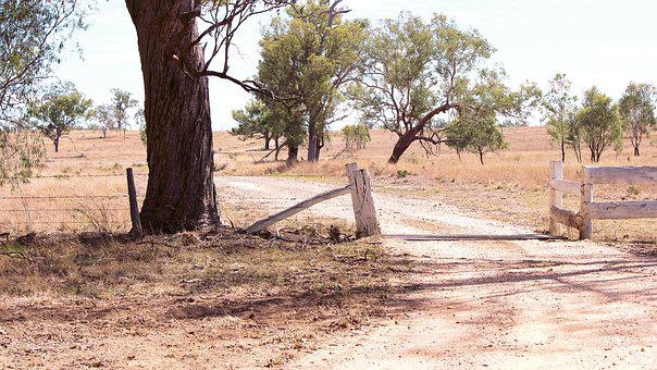 Outback, Gate, Countryside, Scenic, Farming, Rural