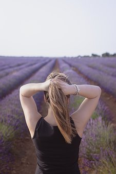 Girl, Lavender, Back, Nature, Plant, Field