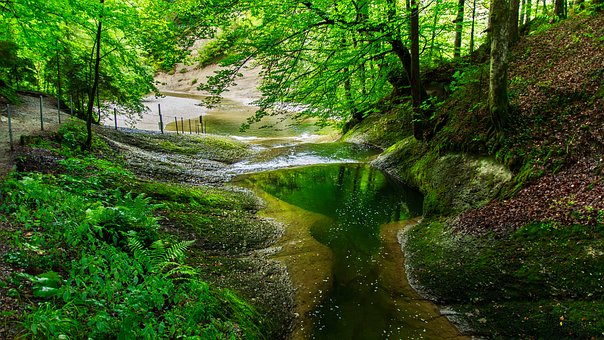 Creek, Rock, River, Mountains, Cold, Nature, Forest