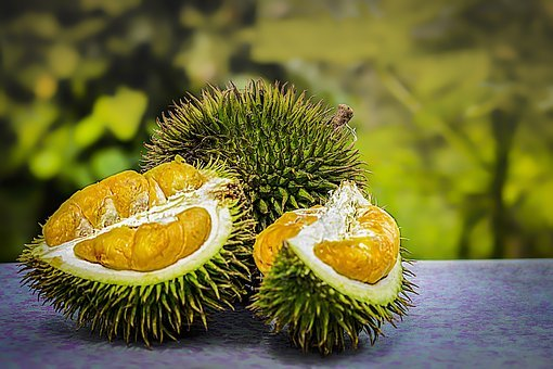 Durian, Fruit, Tropical, Malaysia, Smelly, Thorn
