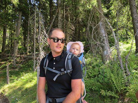 Forest, Hiking, Child, Baby Carrier, Holiday, Nature