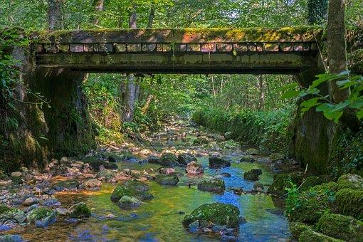 Bridge, Wooden Bridge, Trail, Wood, Pedestrian Bridge