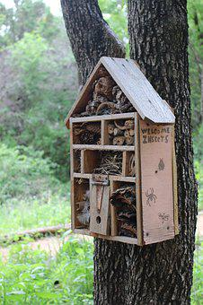 Bug Hotel, Bug House, Outdoor, Garden, Nature, Shelter