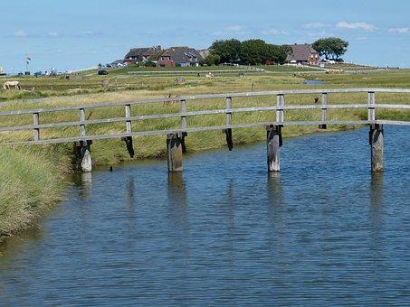 Hallig, Hooge, Terp, Friesland, North Sea, Landscape